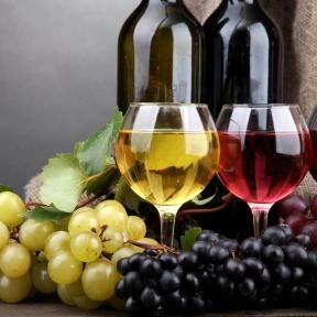 vino_7388-acea0911450c72c86dbfd05f32afd408.jpg